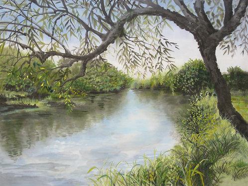 """Wallkill River 1"" Giclee print"