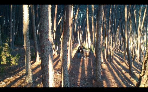 #005 Parque Natural de Montesinho (Portugal)