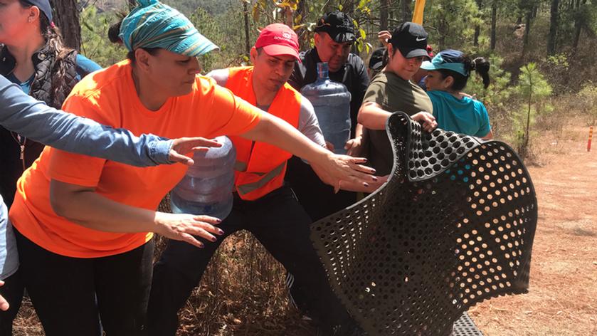 Team Building en el bosque