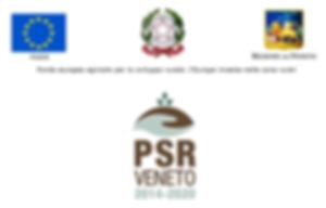 Banner_PSR_beneficiari.png