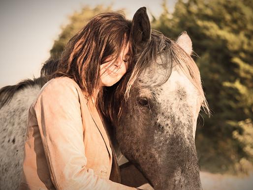 Mijn eerste contact met paarden
