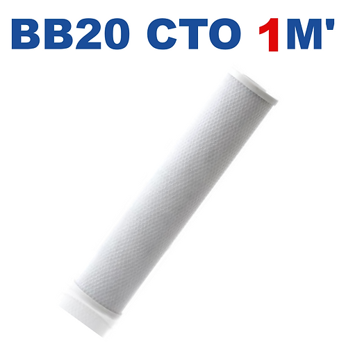 Cartucho BB20 CTO carbón bloque 1M