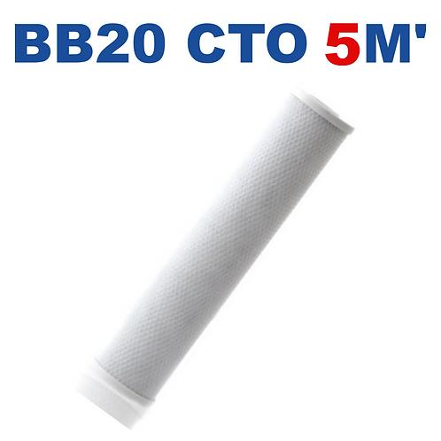 Cartucho BB20 CTO carbón bloque 5M