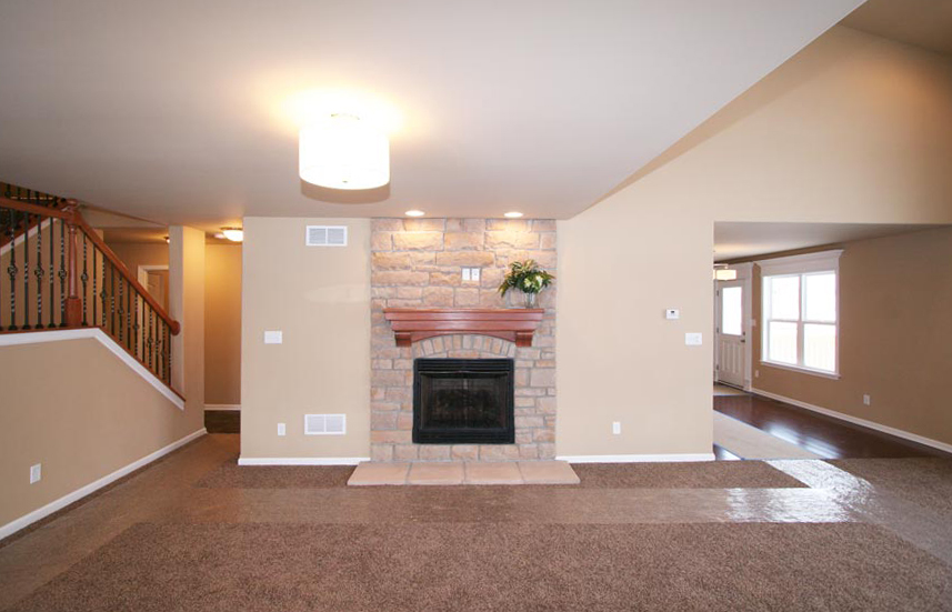 Fireplace and Carpet