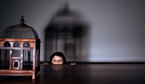Sam Mullaly - Birdcage.jpg