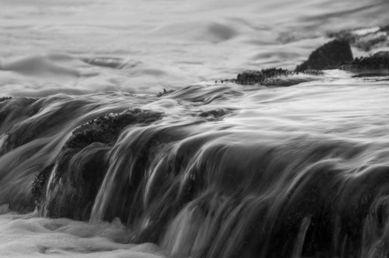 DanielDaviePhotograpy©-8701.JPG