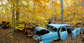 If a Car Decays in the Woods does Anyone Care?I