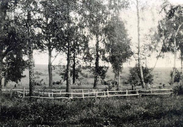 Братская могила погибших солдат в годы ВОВ в лесу возле деревни Коровино. Фото1950-х гг.