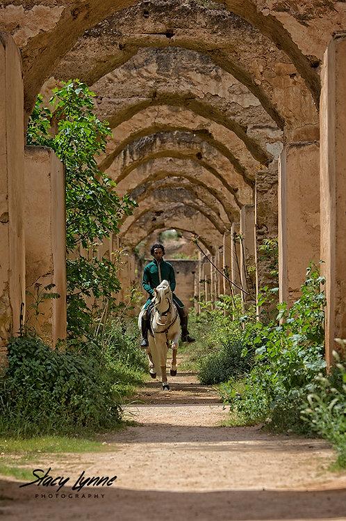 Through the Arches