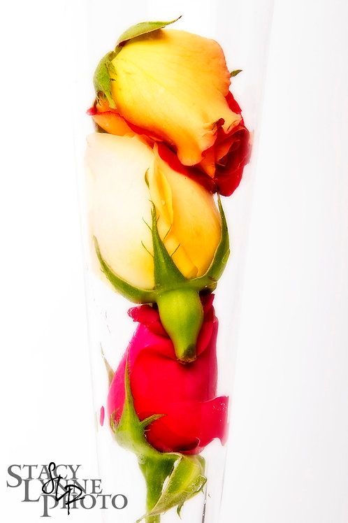 Rose Parfait