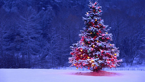 New_Year_wallpapers_New_year_tree_2014_in_the_year_of_the_horse_050650__edited.jpg