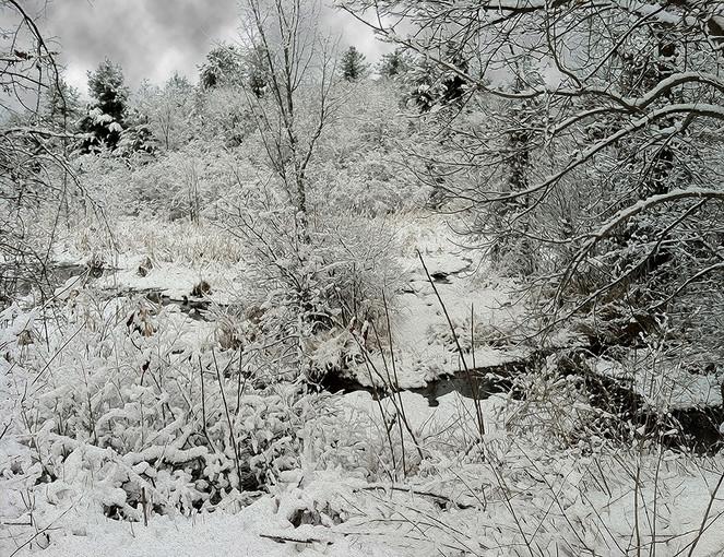 Snow Series - IVa