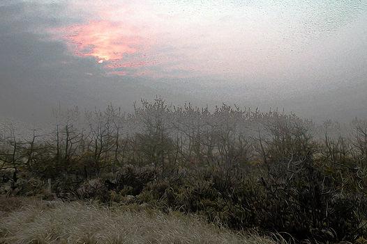 Nantucket-Morning-revisited - web.jpg