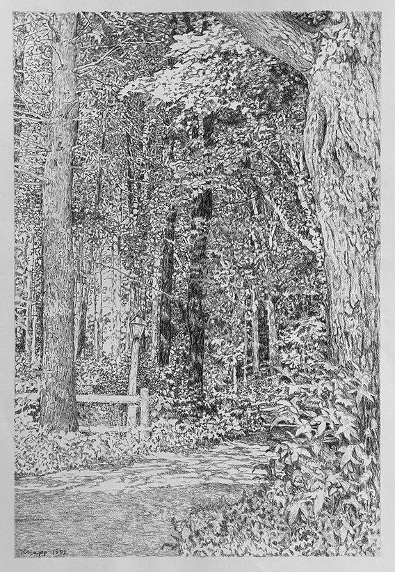 Wooded Home Entry