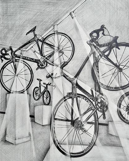 Bicycle Show.jpg