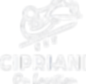 Cipriani On Location | Catering NYC | Corporate Event Catering NYC | off premise catering new york city
