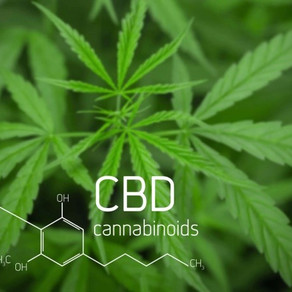 ICYMI:  New York State passed a bill that requires cannabis-based CBD extracts testing