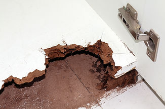 nest-termite-damaged-wooden-eaten-by-ter