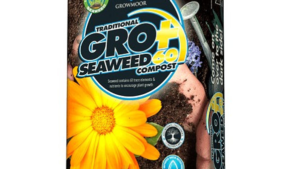 Seaweed 60