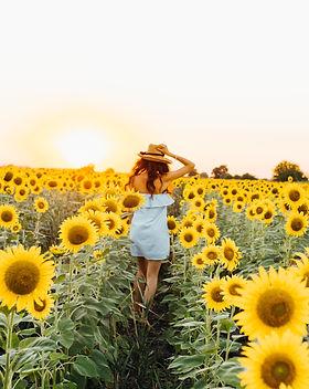 femme dans un jardin de tournesols