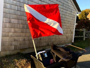 Please Stay Away from diver down flags