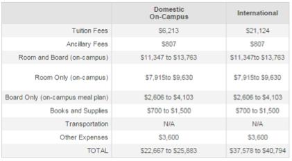 Screenshot of university costs.