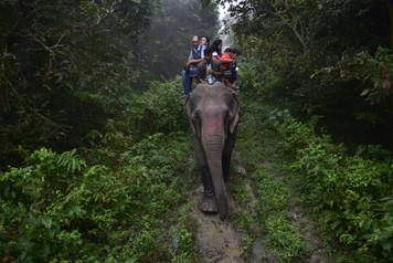 Kaziranga, Assam