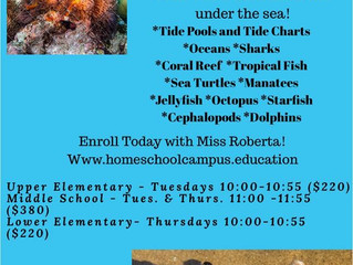 Marine Biology - Various, CA (outdated flyer from Homeschool Campus, contact for new flyer)