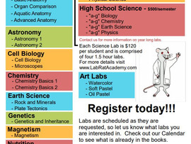 Lab Rat Academy: Science Classes for All Ages - Monterey Bay, Sacramento/Yolo - CA