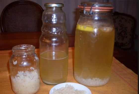 Kéfir: La Boisson probiotique de l'été
