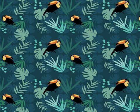 Jungle Toucans