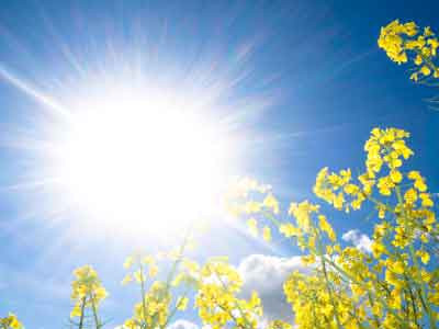 Des nutriments pour protéger votre peau du soleil estival