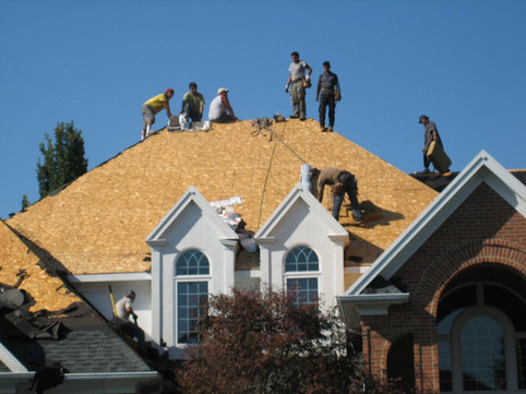 roof 11.jpg