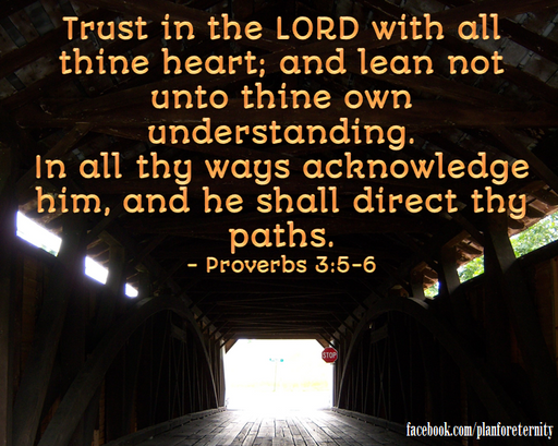 Trust in God and not your own understanding