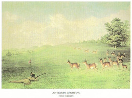 THE WEST - ANTELOPE SHOOTING