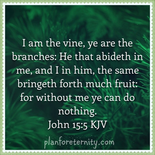 We can do nothing fruitful without Jesus