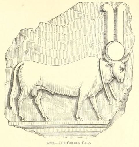 They create the golden calf