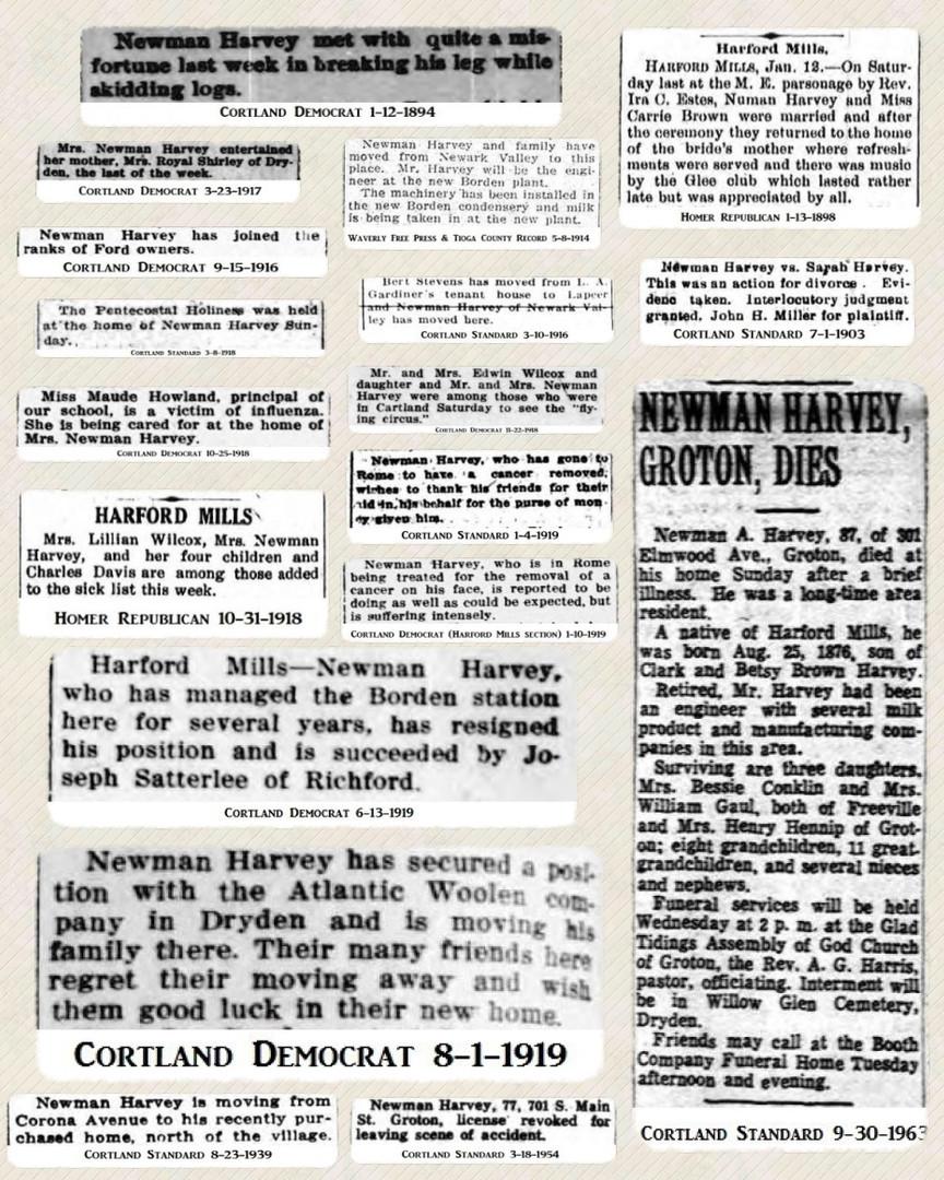 Newman Harvey news and photos