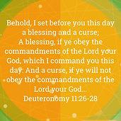 Deuteronomy 11:28