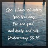 Deuteronomy 30:15