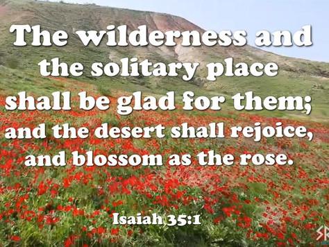 Fulfillment of the Dead Sea prophecies