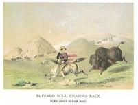 THE WEST - BUFFALO CHASING BACK