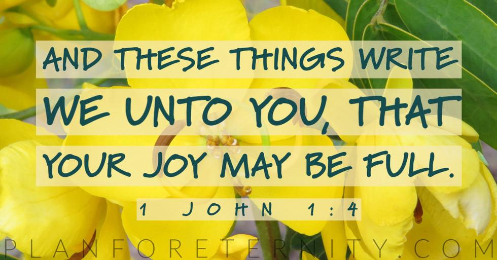 May your joy be full