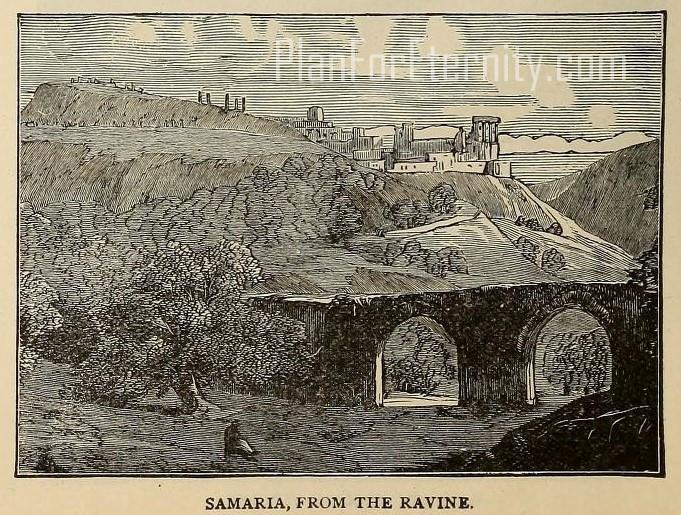 Samaria from the Ravine