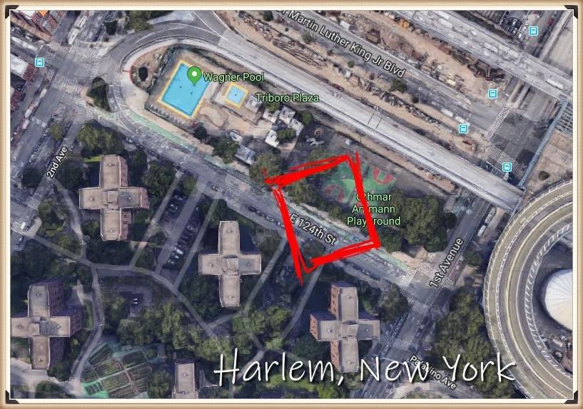 Daniel Tourneur's life in Harlem