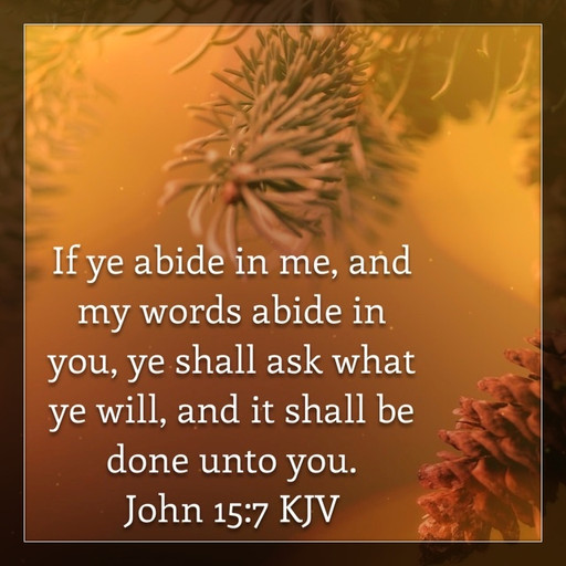Ask and it shall be done if you abide in God's Word
