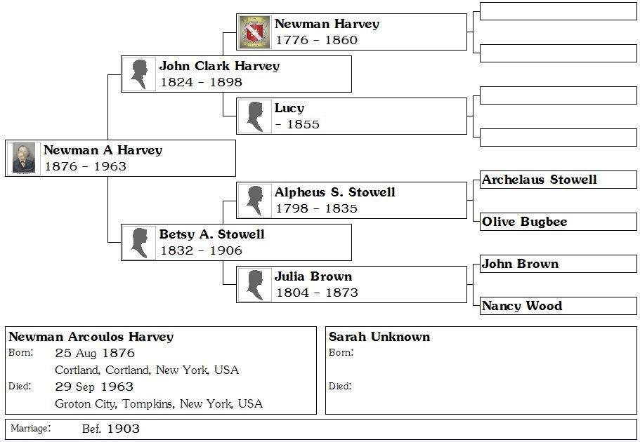 Newman Harvey's family tree