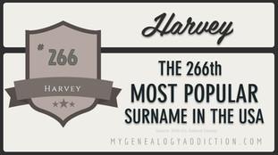 0266-Harvey.JPG