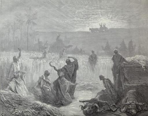The return of the Ark