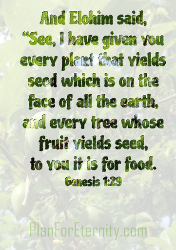 Food with seeds